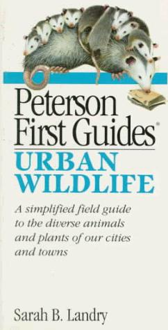 Peterson first guide to urban wildlife by Sarah Landry